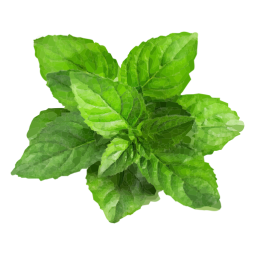 peppermint-extract