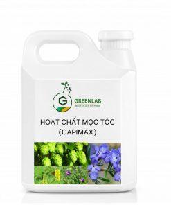 hoat-chat-moc-toc